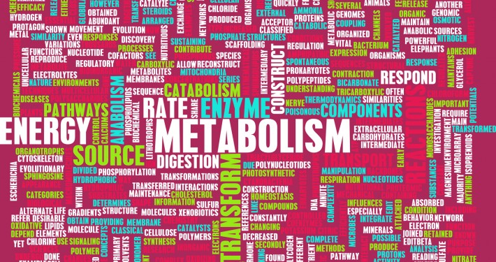 Need a boost in your Metabolism?