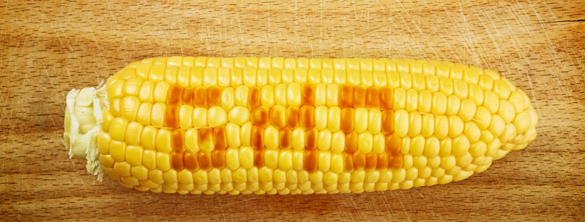 5 Key Points to Consider for Labeling GMO Products